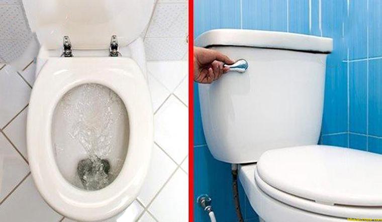 Nên đóng hay mở nắp bồn cầu sau khi đi vệ sinh?