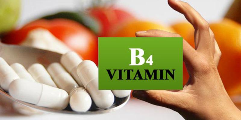 Vitamin B4 và những điều chưa biết-4
