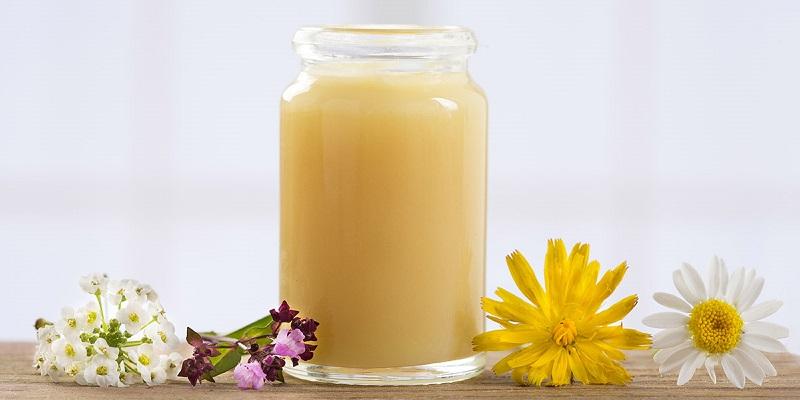 Sữa ong chúa có tác dụng gì đối với bé?