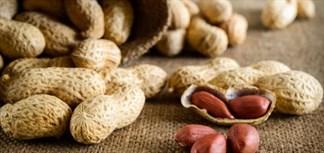Ăn đậu phộng có mập không?