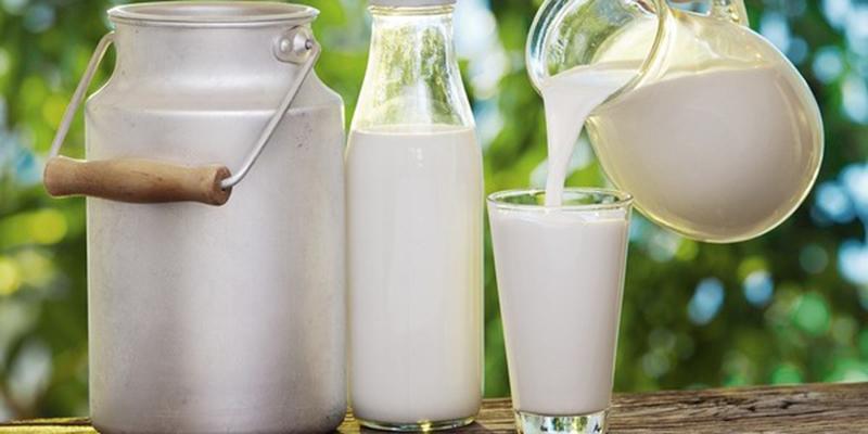 Nước và các loại sữa