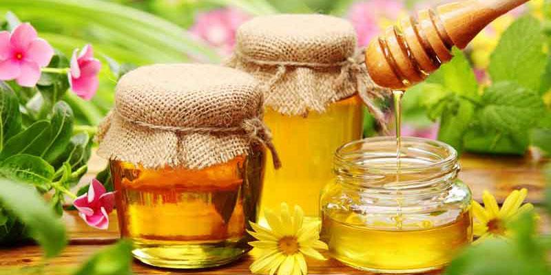 Phân biệt mật ong thật và mật ong nuôi