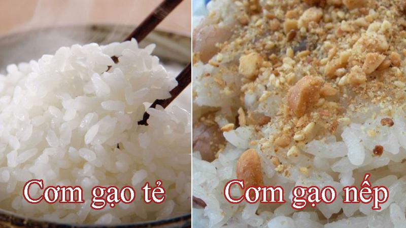 Phân biệt gạo nếp và gạo tẻ, chúng được dùng để nấu món gì?