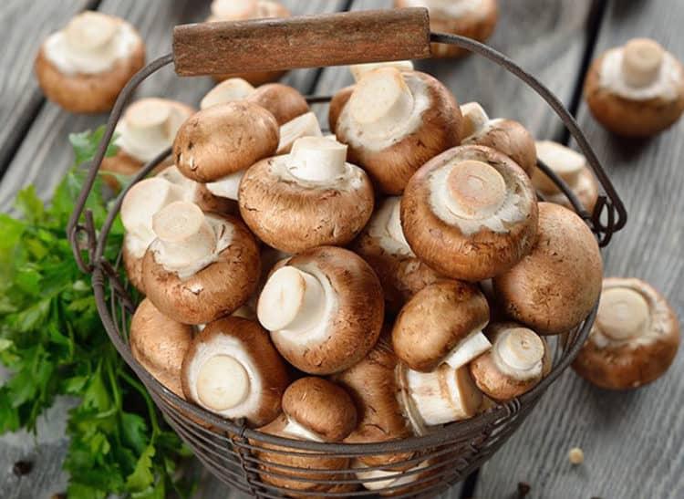 Mẹo bảo quản các loại nấm dùng lâu ngày