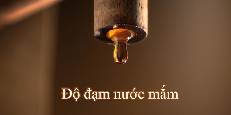 Cách phân biệt nước mắm dựa trên độ đạm