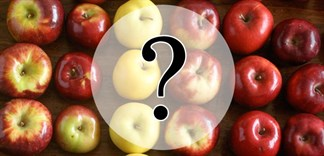 Cách phân biệt táo Trung Quốc và táo nhập khẩu