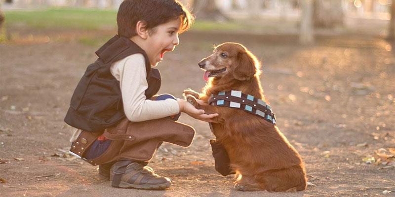 Cho trẻ tiếp xúc với động vật từ sớm giúp giảm nguy cơ dị ứng khi lớn lên