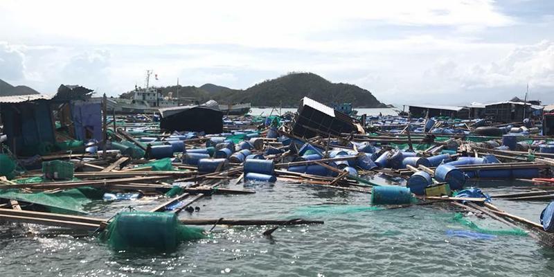 Khánh Hòa sau cơn bão số 12