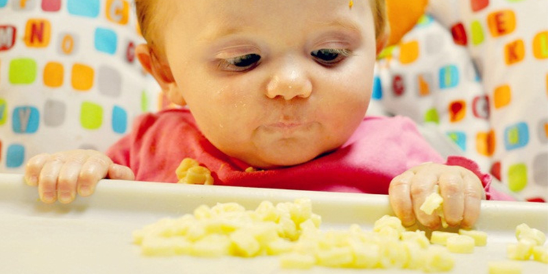 Sai lầm khi cho bé ăn phô mai