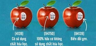 Bạn có biết ý nghĩa của những mã số trên trái cây?