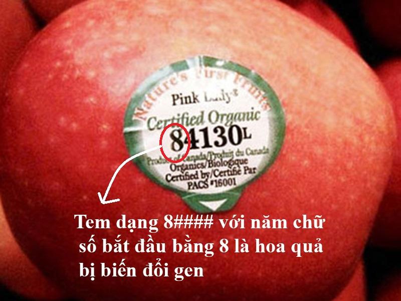 Ý nghĩa của những mã số trên tem dán hoa quả