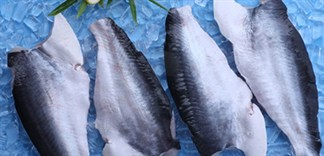 Lý do bạn nên ăn cá tra thường xuyên