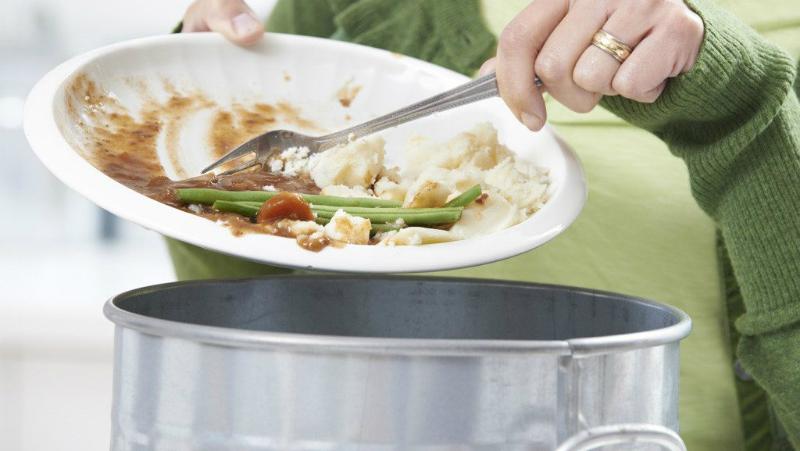 Cách phòng tránh giòi xuất hiện trong thùng rác