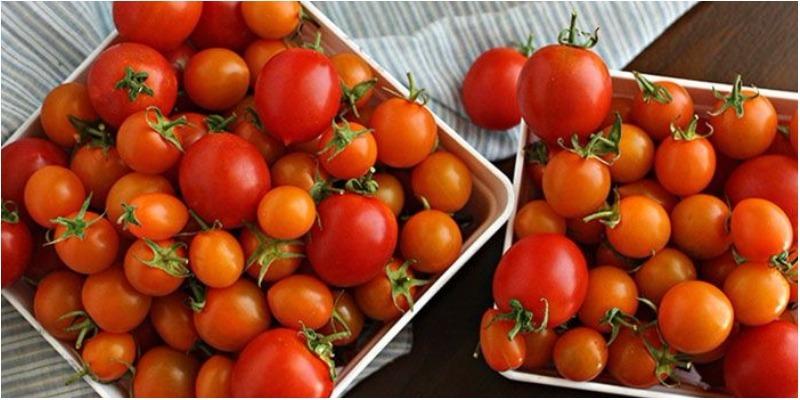 7 điều cần ghi nhớ khi ăn cà chua