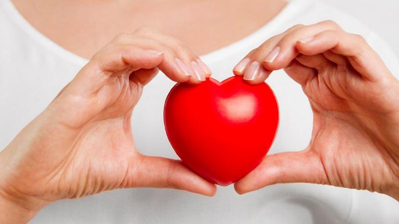 Trà Atiso tốt cho tim mạch