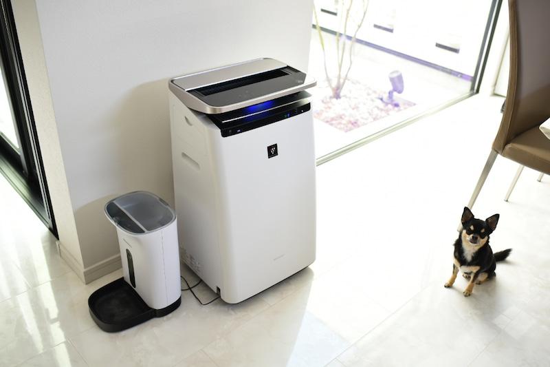 Lắp đặt máy lọc không khí và thay mới thường xuyên các bộ lọc