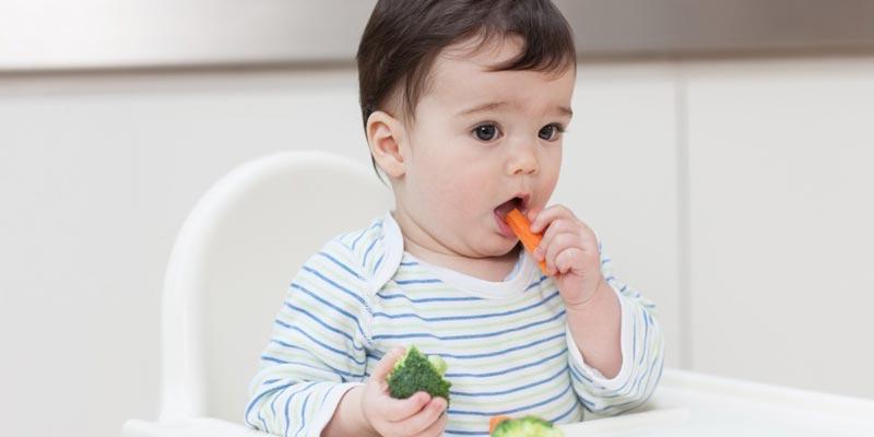 Nếu bạn cho trẻ ăn chay, đồng nghĩa với việc thiếu chất, thiếu sắt, ảnh hưởng đến thể chất, thần kinh và não bộ của trẻ. Nhiều nghiên cứu cho thấy, những đứa trẻ ăn chay thường xuyên sẽ bị suy dinh dưỡng vì thiếu chất.