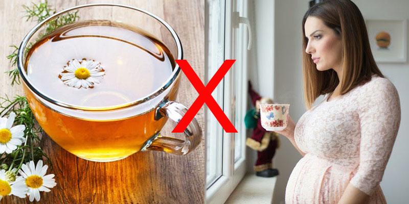 Bà bầu không nên uống trà hoa cúc