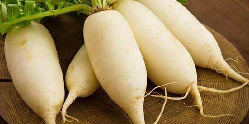 củ cải trắng chứa Vitamin C, protein là những dinh dưỡng thiết yếu, chúng còn rất ngon miệng