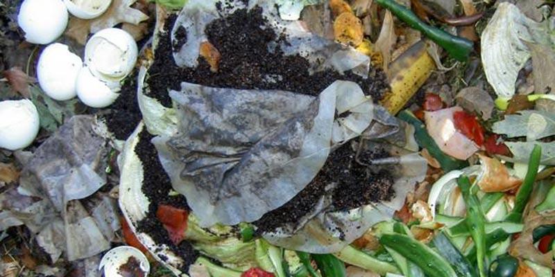 Với những túi trà đã dùng qua, bạn có thể cho vào ủ chung với phân hữu cơ