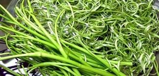 Thực hư ăn rau muống sống sẽ bị xơ gan?