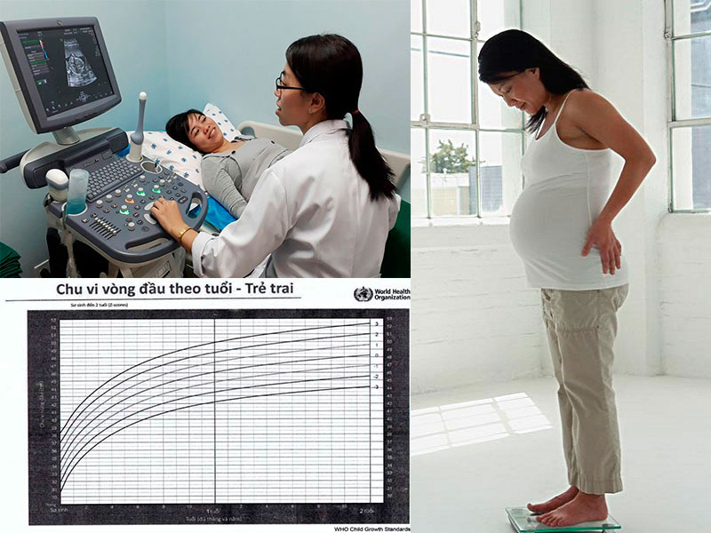 Kiểm tra sức khỏe thai nhi