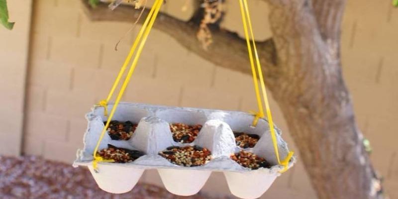 Khay đựng thức ăn cho chim