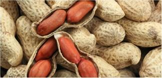 Thực hư việc ăn vỏ lụa đỏ của đậu phộng tốt cho sức khỏe