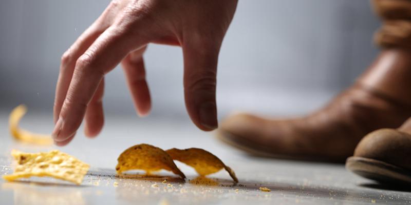 Phải đảm bảo thức ăn được làm sạch, để không cho chúng chạy lanh quanh trong ngôi nhà.
