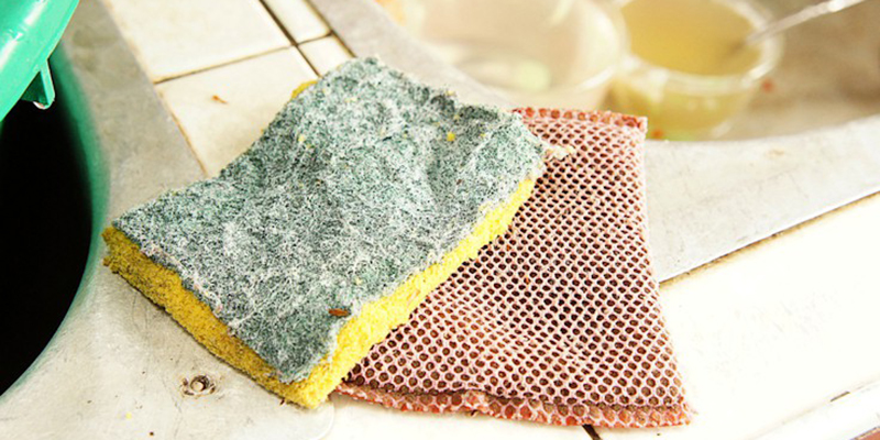 Kể cả khi đã được vệ sinh bằng cách đun sôi, miếng bọt biển rửa bát vẫn chứa chất bẩn và vô số mầm bệnh