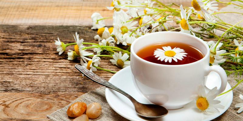 Điều trị u nang buồng trứng bằng trà hoa cúc