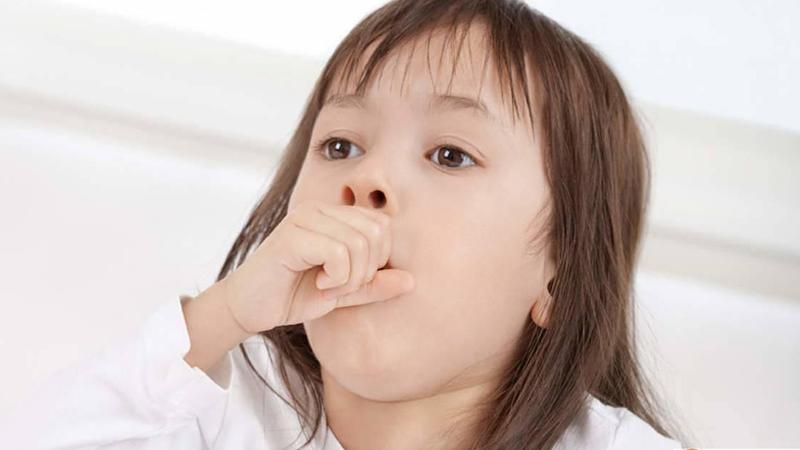 Trẻ nhỏ mắc bệnh, đặc biệt là chứng ho dai dẳng lâu dài sẽ khiến các bậc cha mẹ ngày đêm lo lắng cho sức khỏe của các em