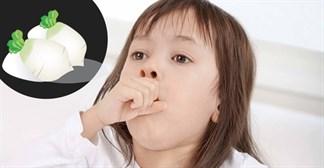 Trị ho cho con bằng củ cái trắng hiệu quả chỉ trong 2 ngày