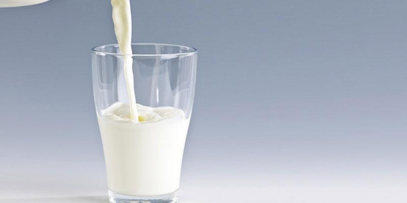 Các thành phần của sữa sẽ rất có lợi cho đất trồng, nhờ đó cây nhà bạn sẽ phát triển nhanh, tốt và khỏe mạnh.