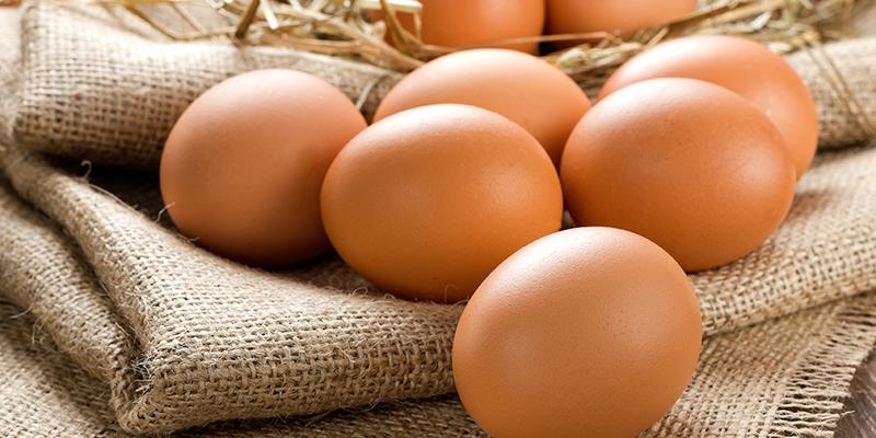cứ 1 quả trứng gà bổ sung 14% lượng protein cần thiết cho cơ thể của bạn mỗi ngày
