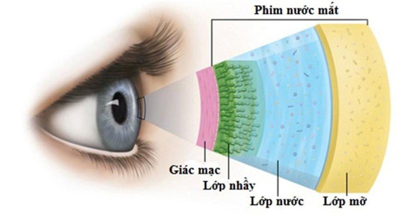 Khô và nhức mỏi mắt là gì?