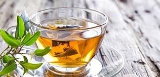 Nên chọn trà khô, trà xanh hay trà túi lọc?