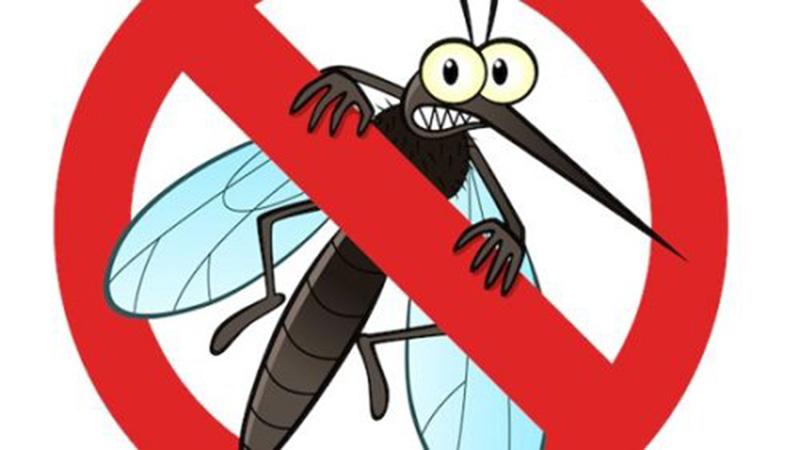 Có rất nhiều cách đuổi muỗi được các gia đình áo dụng phổ biển như dùng nhang muỗi, phun thuốc diệt muỗi quanh nhà, dùng vượt hay đèn để bắt muỗi. Tuy nhiên những biện pháp này không có tác dụng lâu dài, tốn kém và có nguy cơ ảnh hưởng đến sức khỏe.