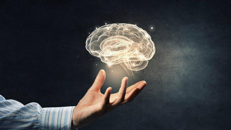 Cá nục tốt cho não bộ