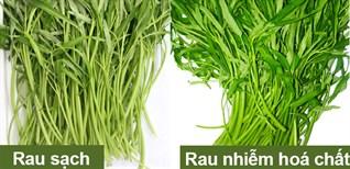 Cách nhận biết rau muống nhiễm hóa chất