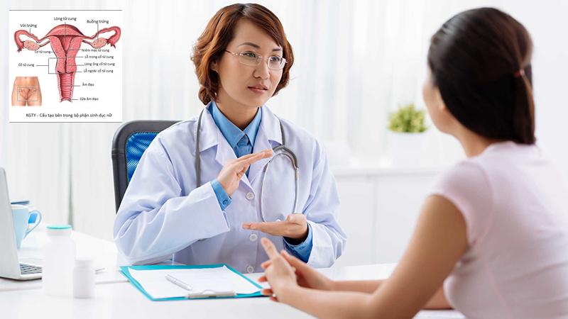 Kiểm tra hệ thống sinh sản trước khi mang thai
