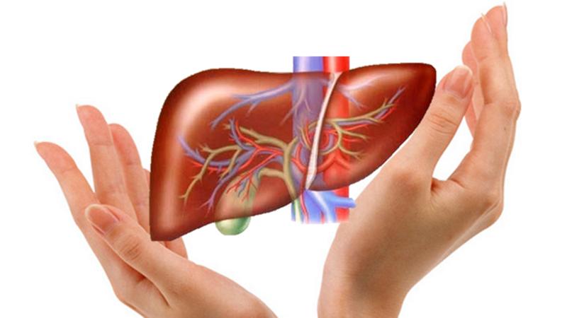 Kiểm tra chức năng gan trước khi mang thai