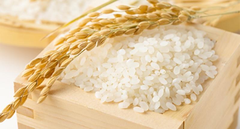 Nên mua gạo chất lượng, ở cửa hàng, thương hiệu uy tín