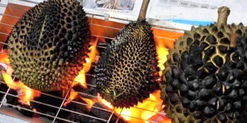 Nướng sầu riêng trên bếp lửa
