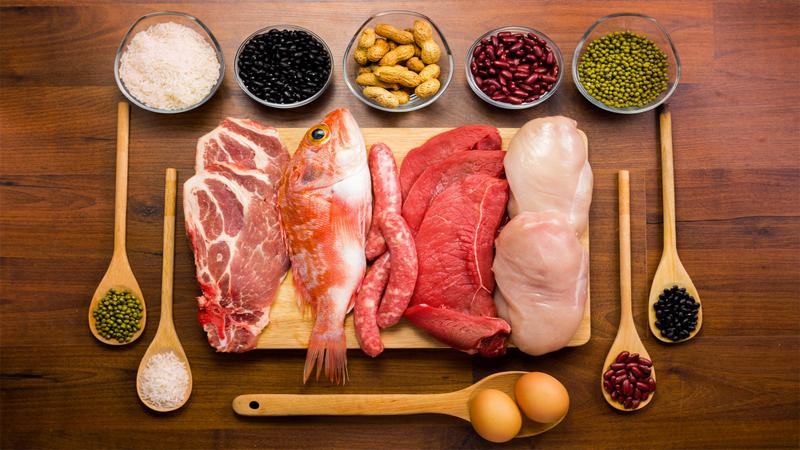 Nguồn protein tuyệt vời có nhiều trong thit, trứng, cá, thịt và đậu