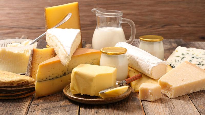 Phô mai là thành phẩm của sữa dê, cừu, bò hoặc từ các động vật có vú khác