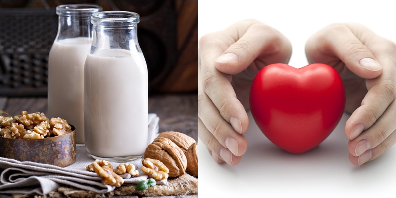Sữa óc chó tăng cường sức khỏe hệ tim mạch