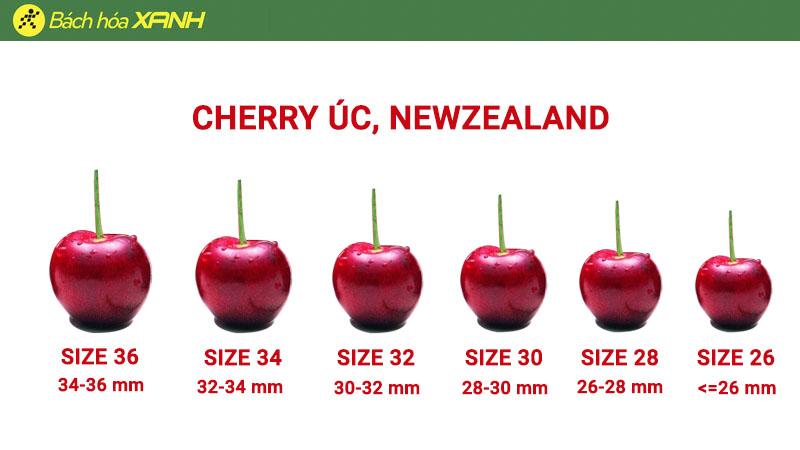 Cách tính size của cherry Úc, Newzealand