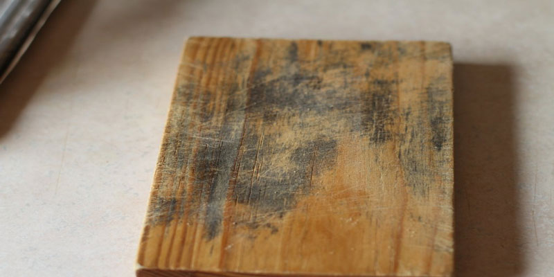 Vật dụng bằng gỗ bị mốc
