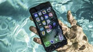 Bất ngờ: iPhone 7 vẫn sống sót sau 2 ngày chìm dưới biển